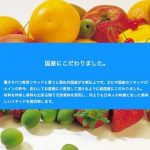 メンソール・ミント系Blueberry Mint(ブルーベリーミント)の商品写真4枚目