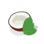 メンソール・ミント系Coconut Menthol(ココナッツメンソール) Captivapeの商品写真1枚目