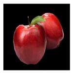 リキッドPG APPLE TEASER(ピージー アップル ティーザー)の商品写真1枚目